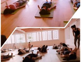 yoga部